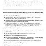 MindSpring frivillig-page-002